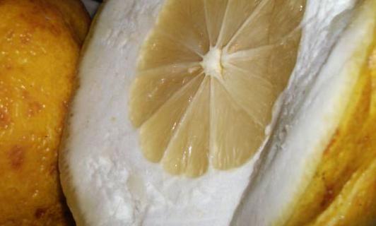 Предизвикателство! Опитайте да консумирате 10 дни вода с лимони