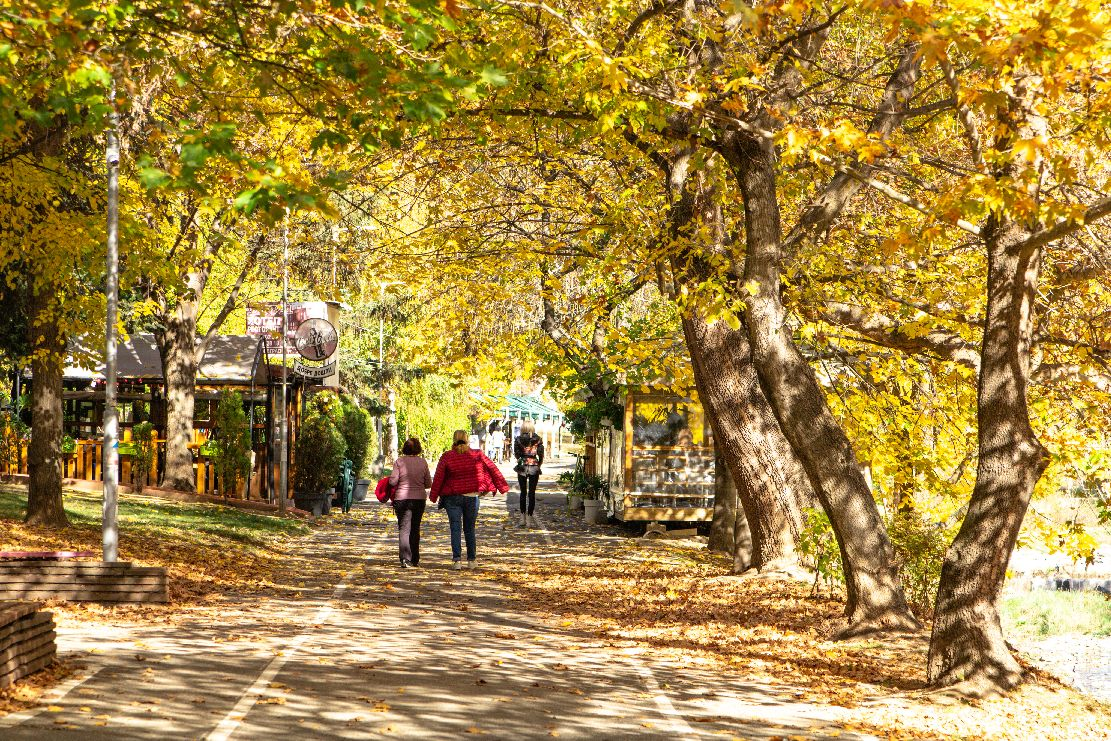 Уникалната красота на есенният сезон
